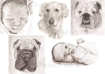 Pencil portraits completed over the last few month